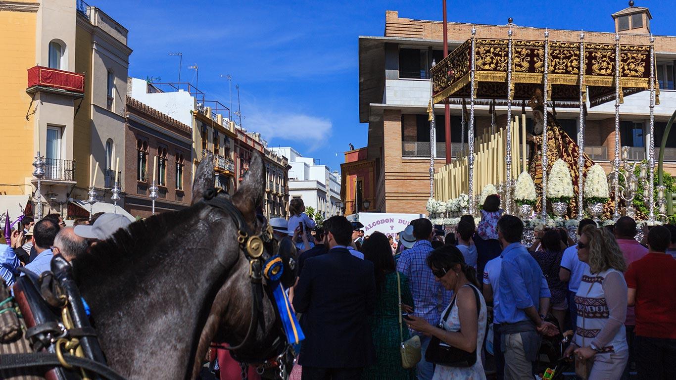 El equino cofradiero. Jueves Santo, Las Cigarreras, 2015 ©Flivillegas