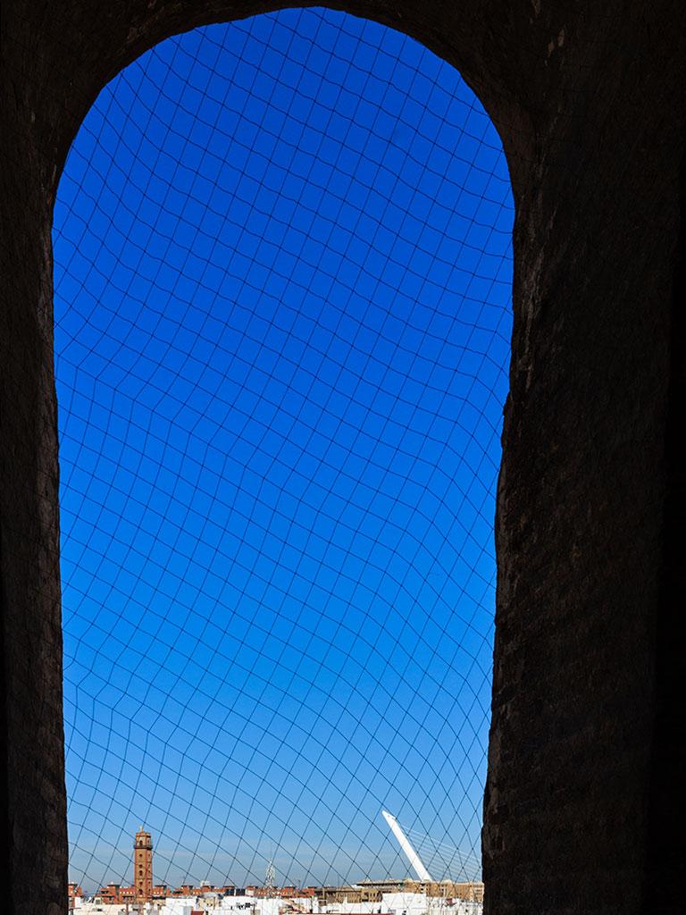 Vista del Puente del Alamillo y la Torre de los Perdigones