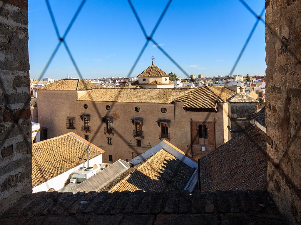 Sevilla enjaulada en Omnium Sanctorum VI, 2013 ©Flivillegas