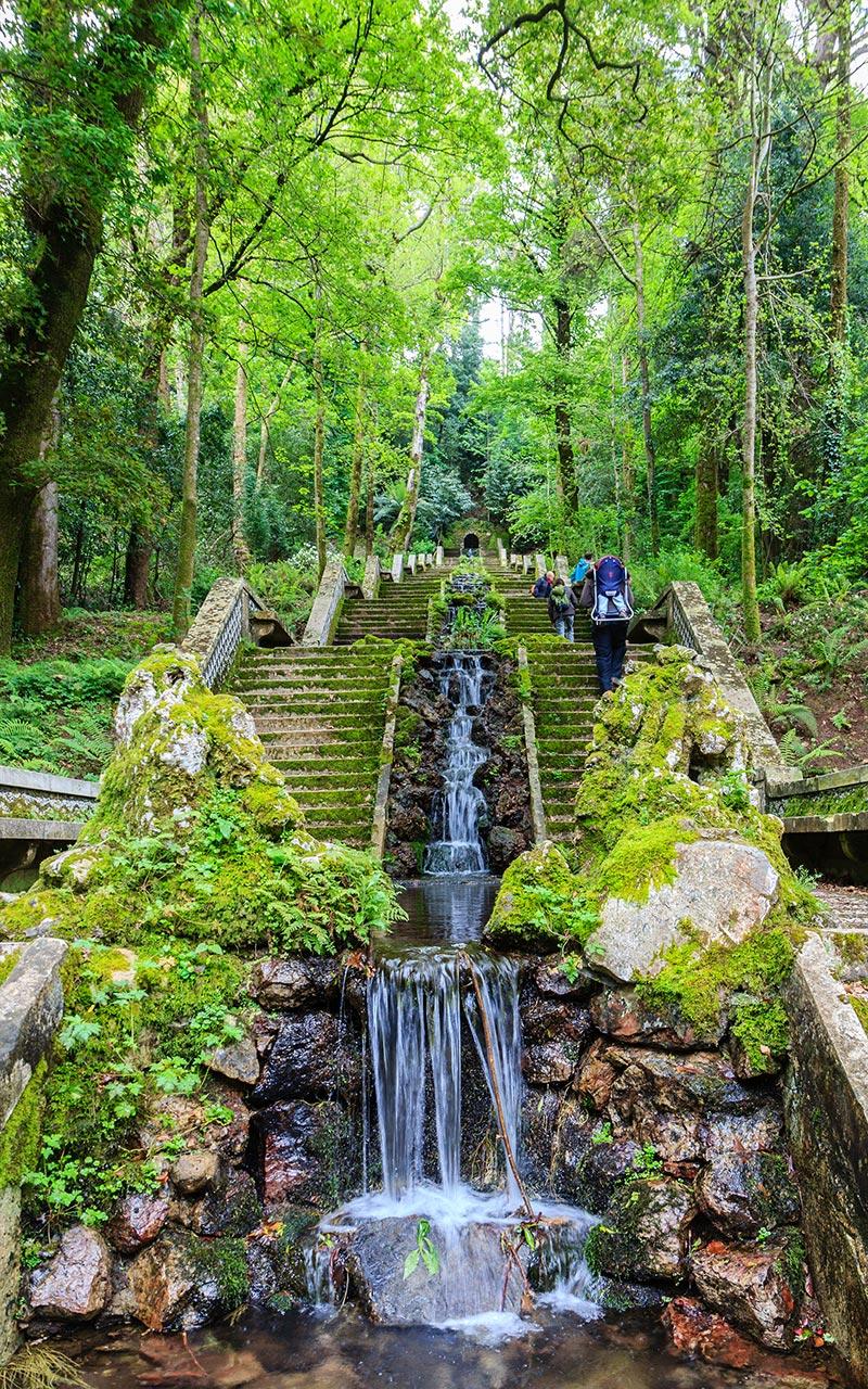 Cascadas en el bosque de Buçaco