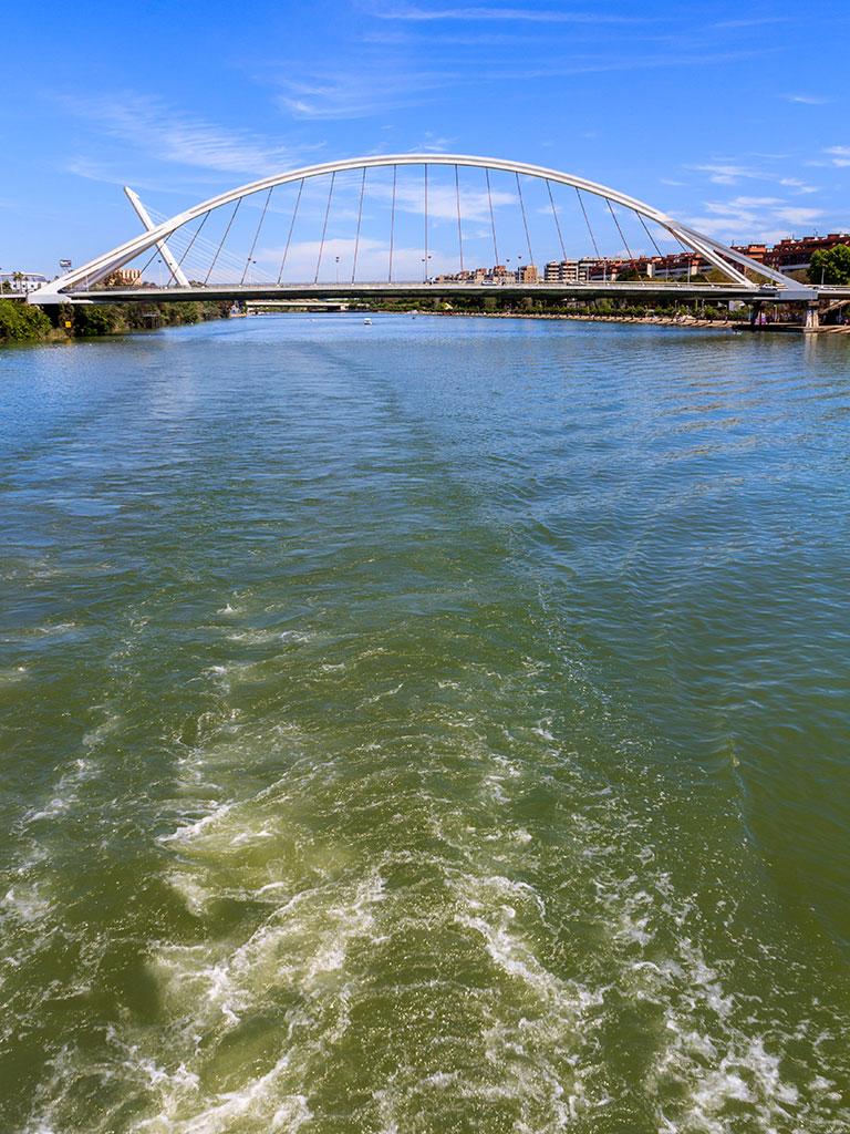 Puentes de la Barqueta y del Alamillo