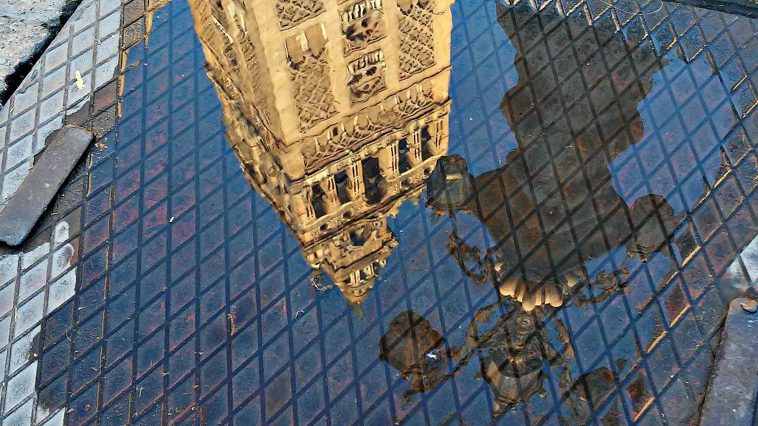 Giralda de la Catedral reflejada