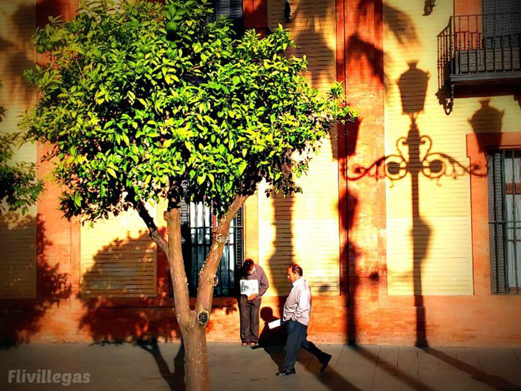 Pobre a la sombra I. Sevilla, 2015. Foto de móvil
