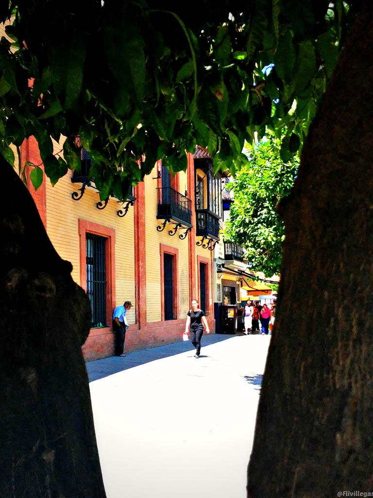 Pobre a la sombra II. Sevilla, 2015. Foto de móvil