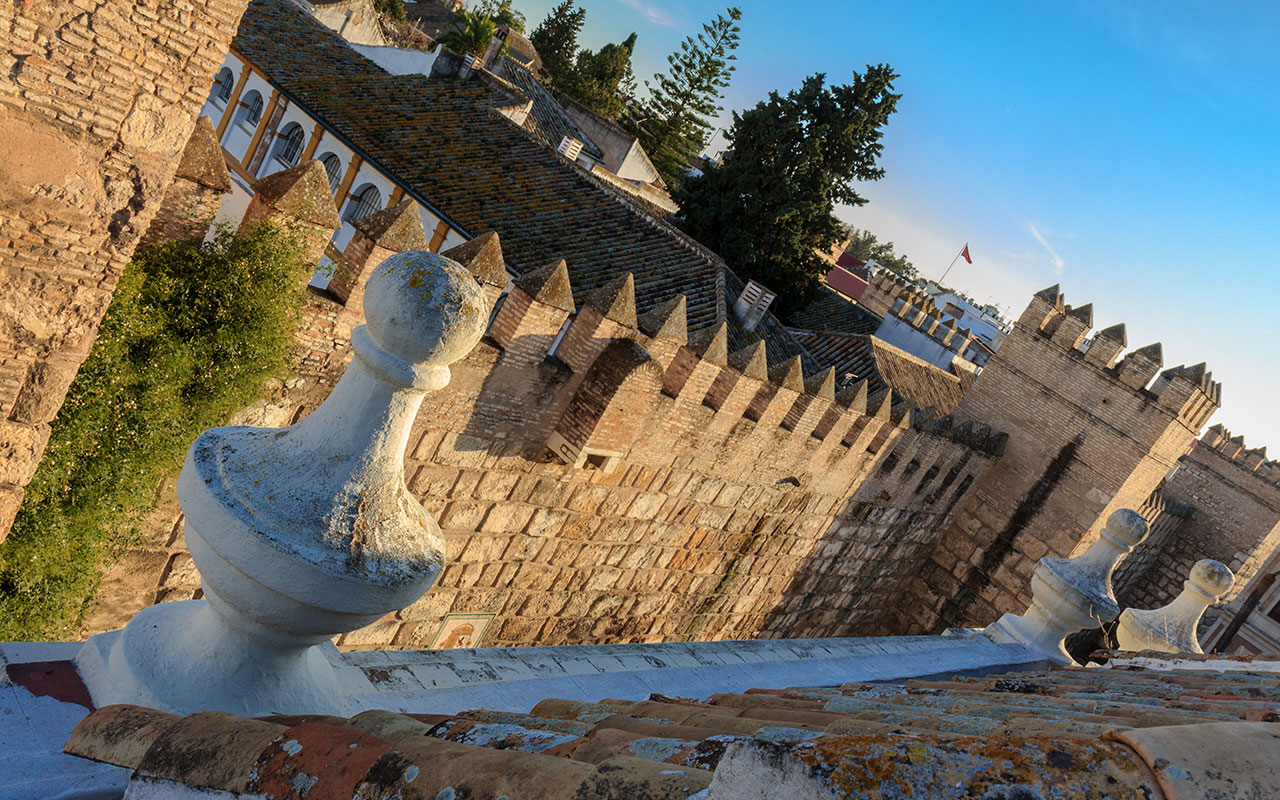 Cerca palatina. Sevilla, 2014 ©Flivillegas