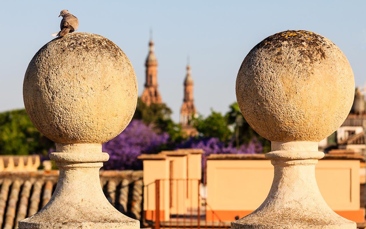 Vista de las torres de la Plaza de España desde el Archivo General de Indias