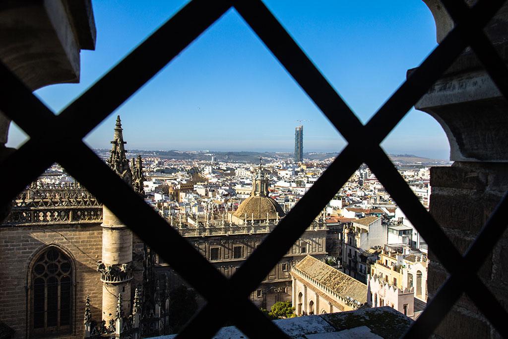 Torre Pelli o Cajasol desde la Giralda