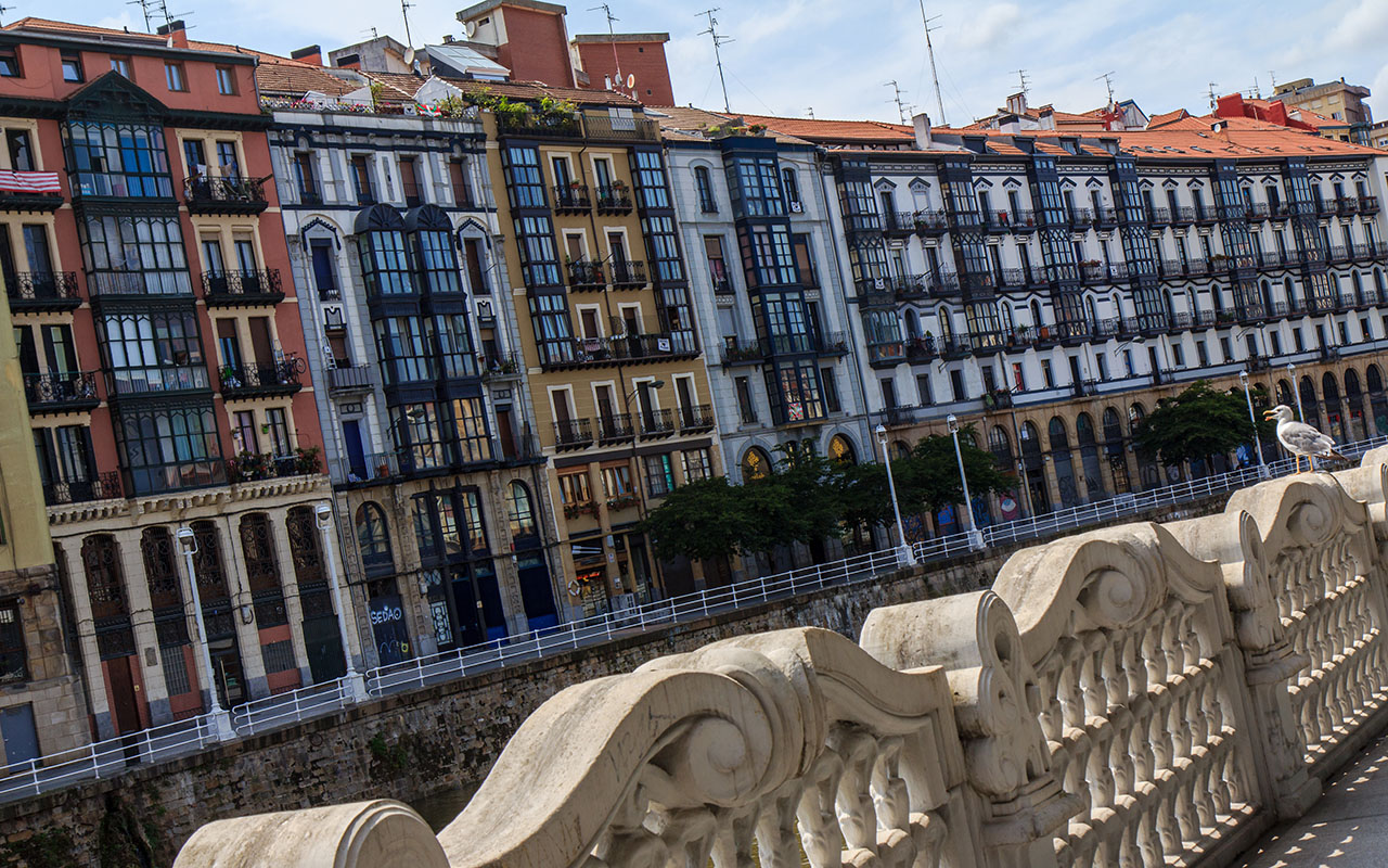 Gaviota con paisaje urbano de Bilbao