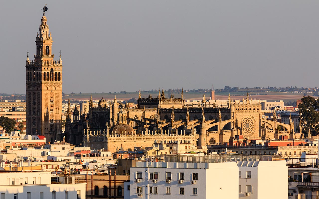 De la Giralda a la Olavide. Sevilla, 2014 ©Flivillegas