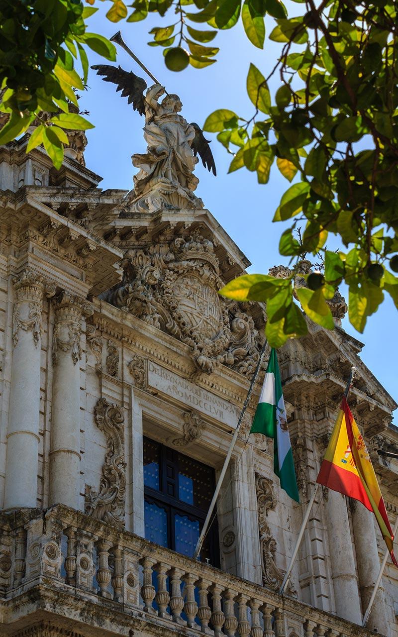 Fama entre naranjos. Sevilla, 2013 ©Flivillegas