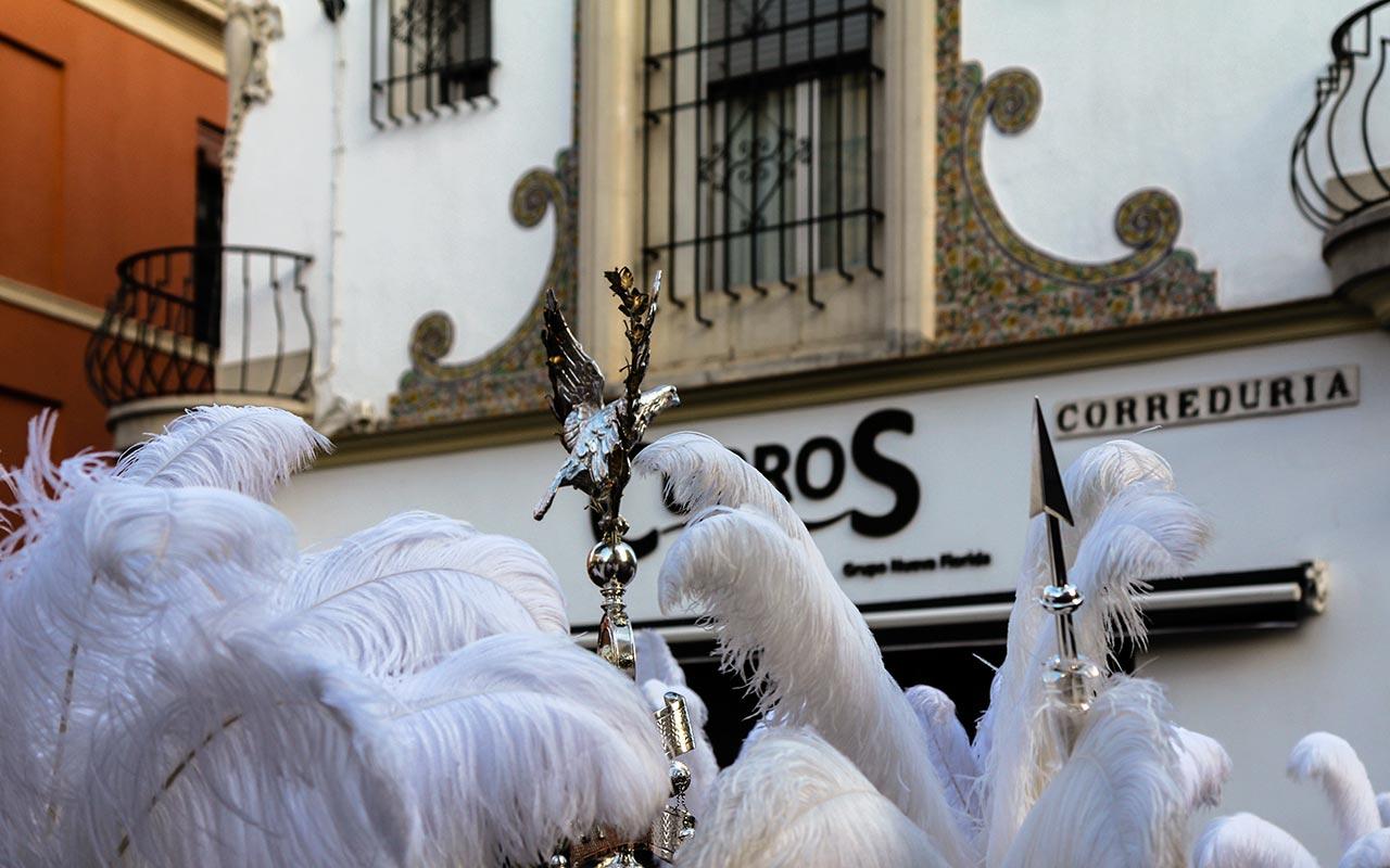 Plumas en Correduría. Viernes Santo, 2012 ©Flivillegas