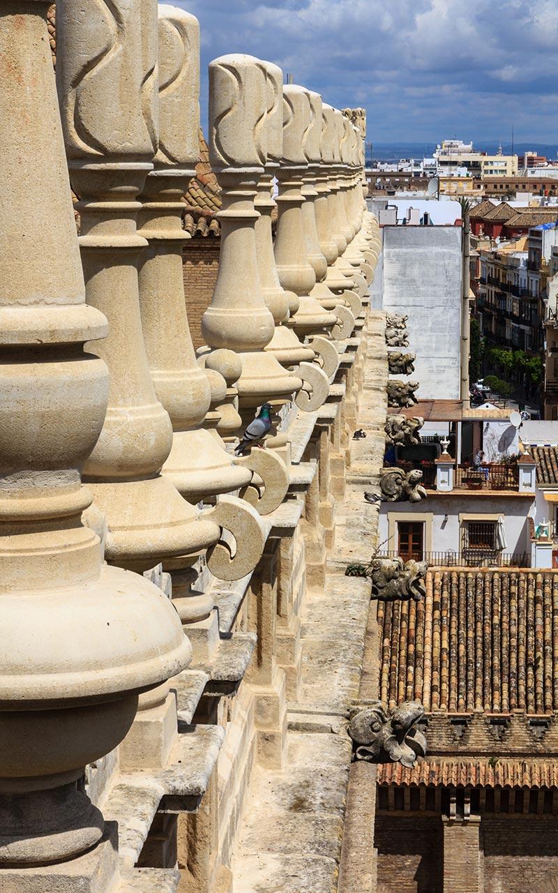 Escuadrón de pináculos y gárgolas en formación. Catedral de Sevilla, 2012 ©Flivillegas