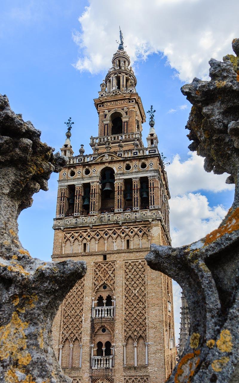 Esbeltez giraldillesca. Catedral de Sevilla, 2012 ©Flivillegas