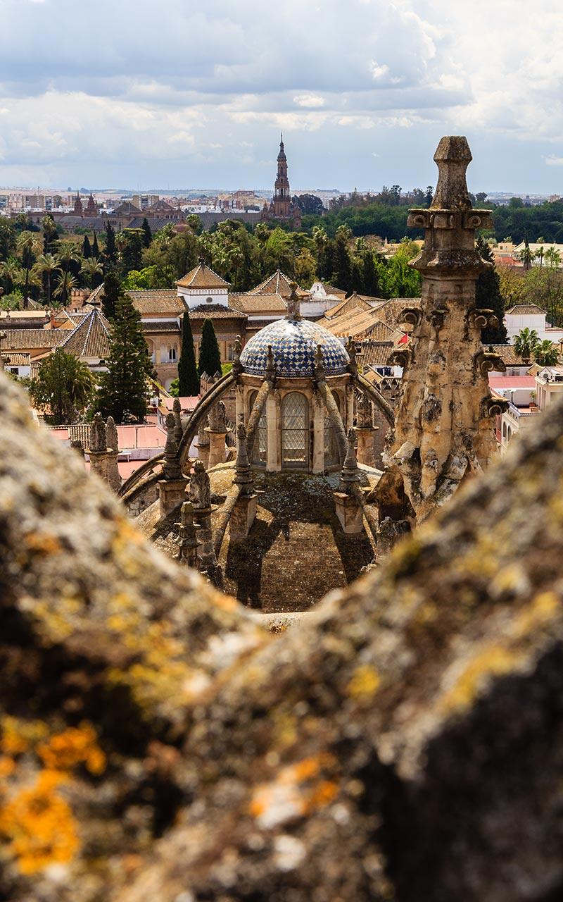 Sevilla desde las cubiertas de la Catedral