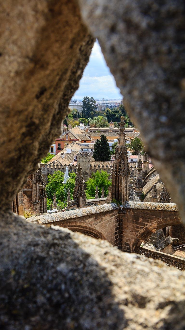 La Inmaculada en un ojal de piedra. Catedral de Sevilla, 2012 ©Flivillegas
