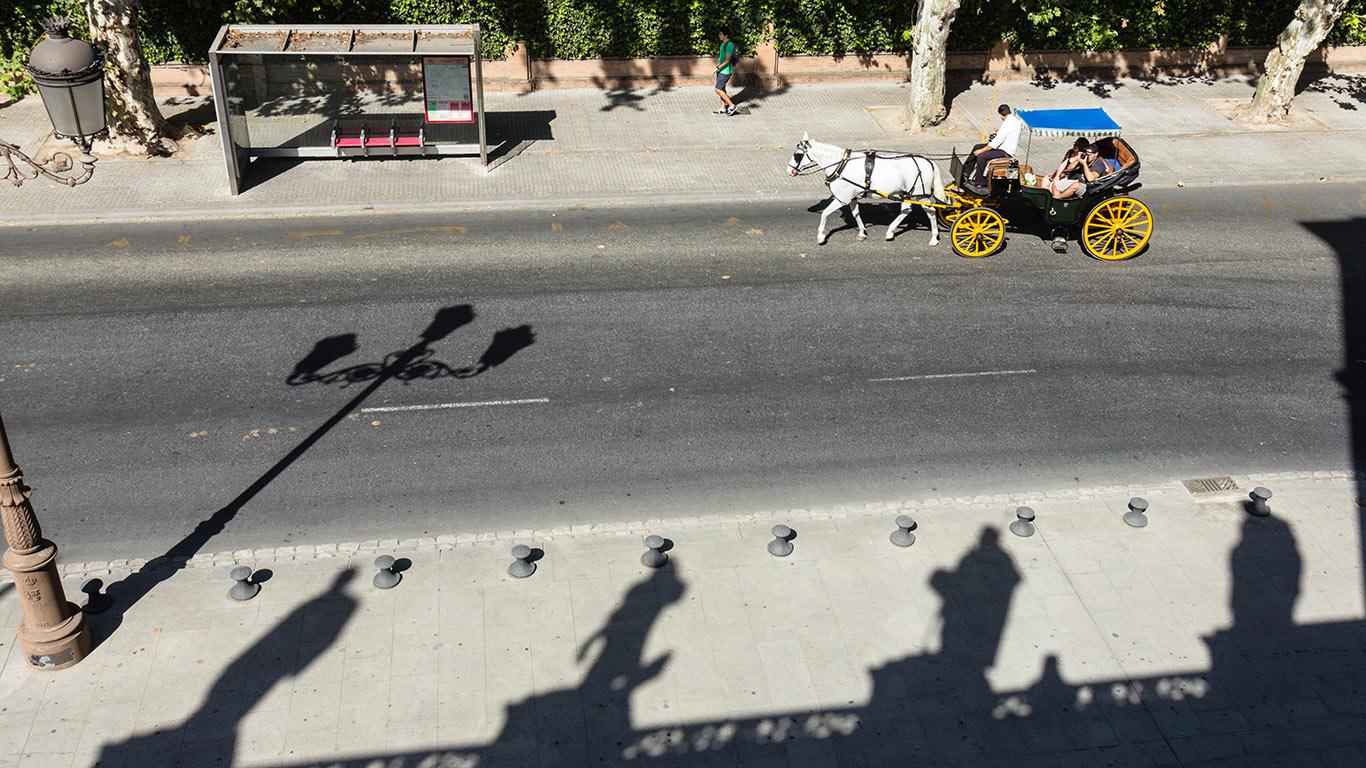 Palacio de San Telmo con coche de caballos