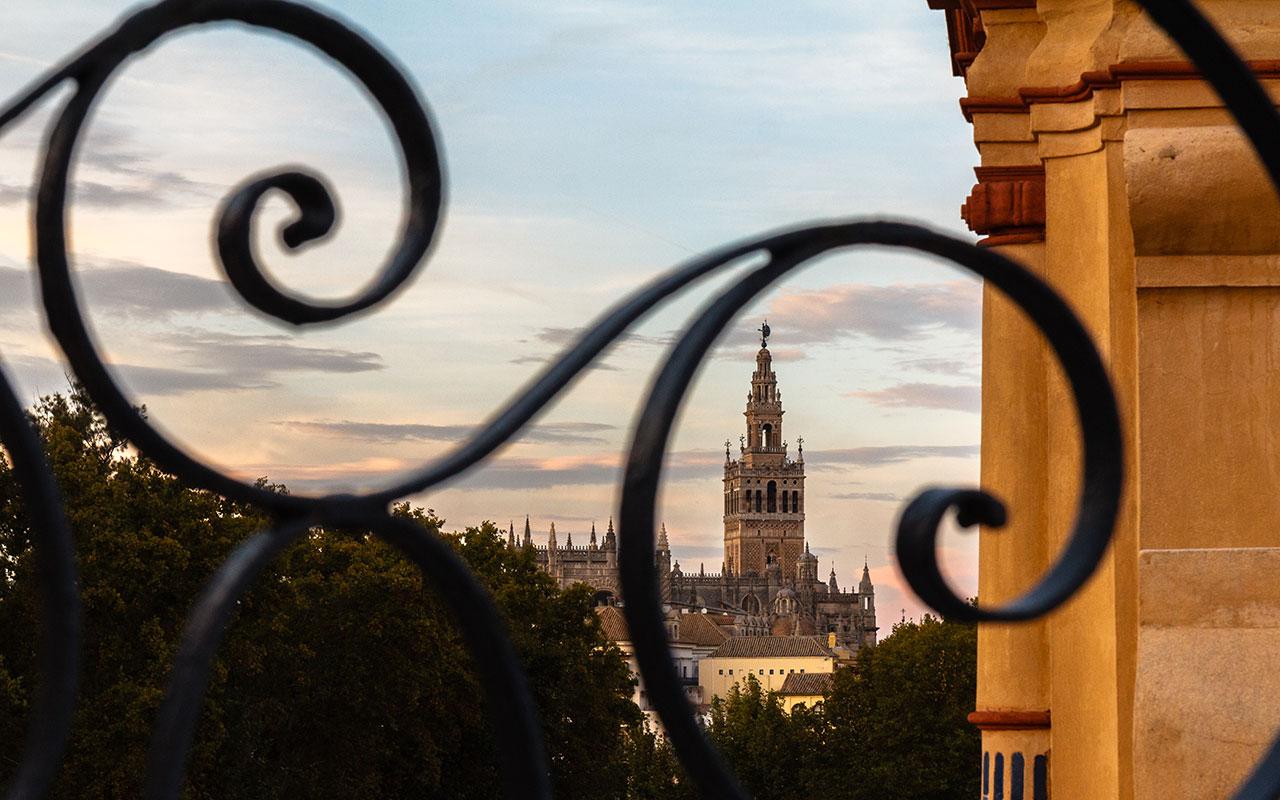Vista de la Giralda desde el Palacio de San Telmo