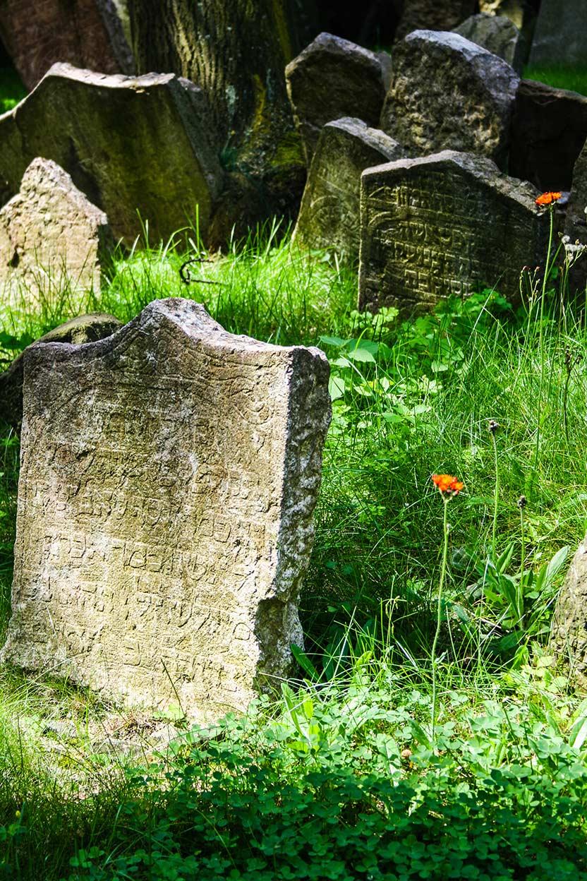 Jewish cemetery. Prague